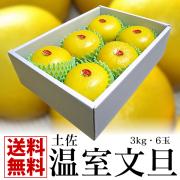 温室文旦 3kg6玉
