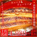 【送料無料】【数量限定】訳あり、特大、高知県産うなぎ蒲焼 2尾セット