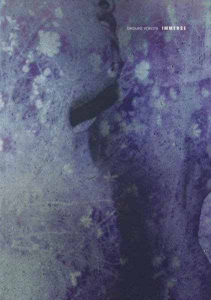 Daisuke Yokota: Immerse