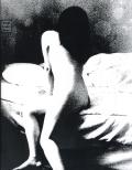 Daisuke Yokota: Taratine / 横田大輔 垂乳根 [Signed]