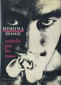 Eikoh Hosoe: ordalie par les roses