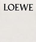 LOEWE 1846 - 2017 Past, Present, Future