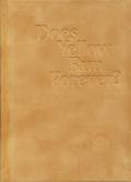 Paul Graham: Does Yellow Run Forever?