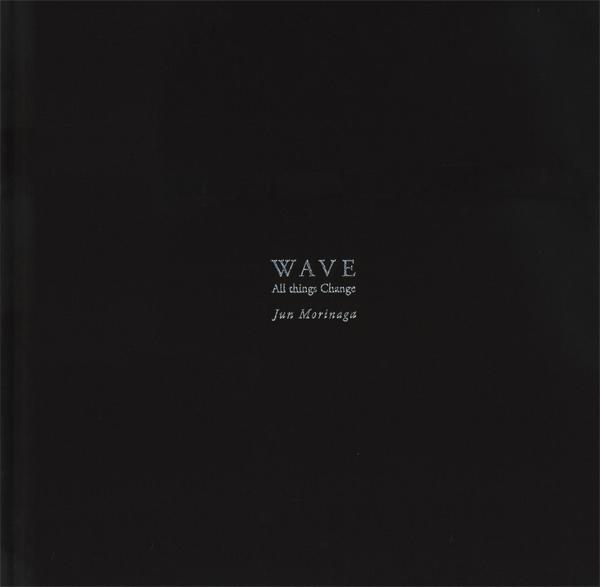 波 WAVE