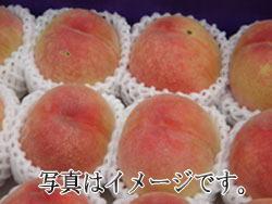 抽選 ご家庭用 早生の桃 小箱