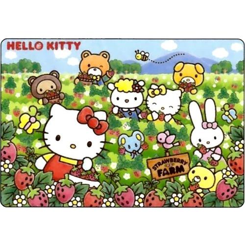 幼児用パズル B4パズル 板パズル チャイルドパズル ピクチュアパズル ピクチャー ハローキティ