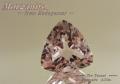 【アクセサリールース】優しいピンク!!マダガスカル産モルガナイトルース2.73ct.トリリアントシェイプ9.5mm