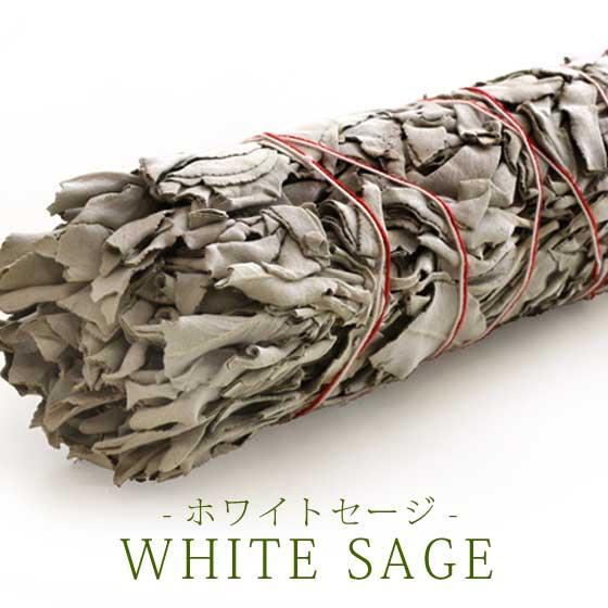 ホワイトセージ(Lサイズ)