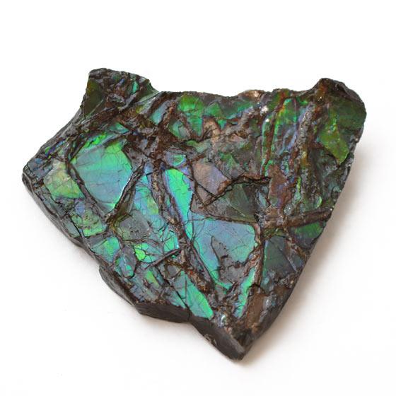 原石 カナダ産 アンモライト