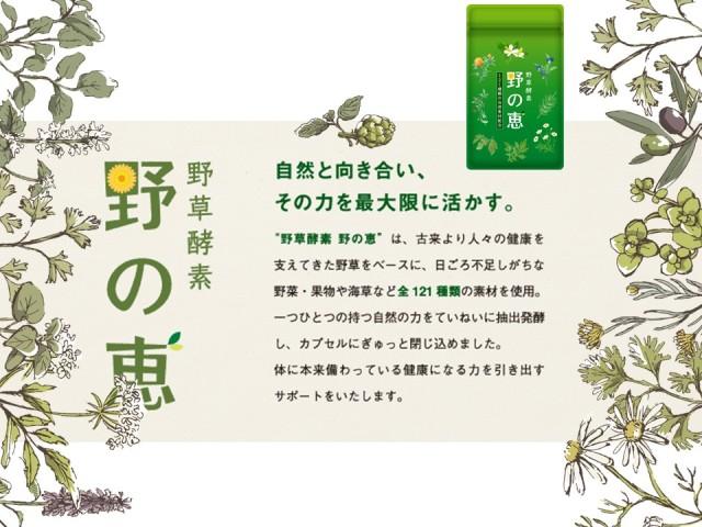【送料無料】5月末日限定!野草酵素 野の恵ご愛顧感謝還元特別価格