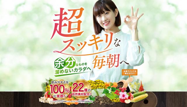 【初回定期980円/送料無料/割引特典】野のめぐみ 紅茶ブレンドティーNono Megumi