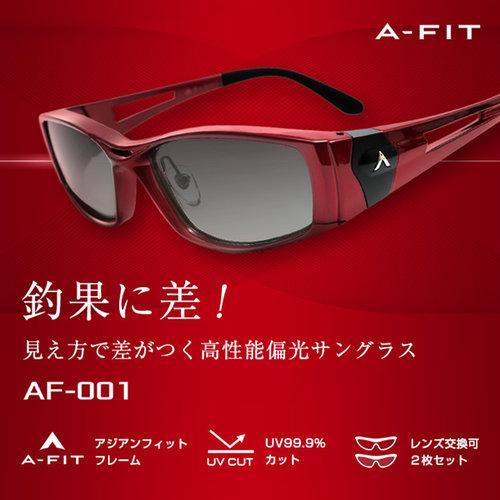 A-FIT 偏光サングラス 2種類の偏光レンズ付属 エーフィットサングラス AF-001