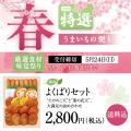 【期間限定】春季節限定商品 春のよくばりセット 送料込