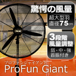 大型扇風機 プロファン2 ジャイアント/E-5810(業務用扇風機 工場扇風機)