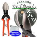 【即納可能】SUWADA かぼちゃの軸 にんにくの根切りハサミ かぼちゃん カボチャ収穫鋏 通販天国限定収納ポーチ付