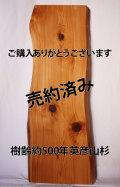 HSM-1 樹齢約500年 英彦山杉 長さ1200mm×厚さ60mm×幅340~400mm【送料無料】
