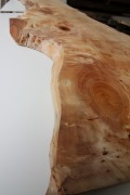 ICH-3 樹齢約150年いちょう一枚板 長さ2800mm×厚さ約42mm×元口幅650mm~末口幅560mm