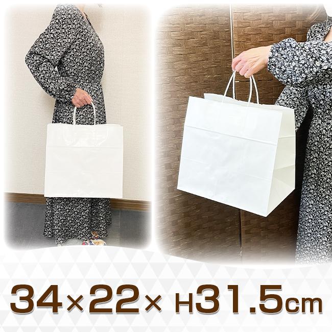 手提げ紙袋 晒白無地(HV75)