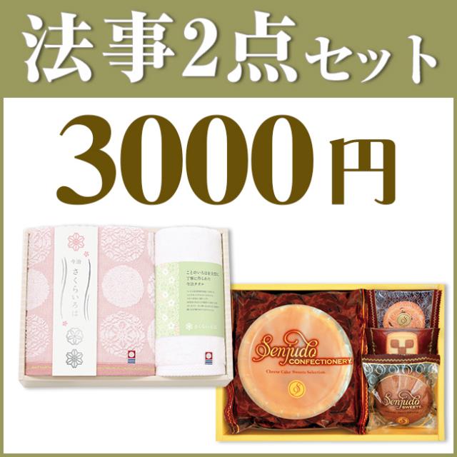 法事3点セット A-3 (海幸彩&今治白なみタオルNo.20)