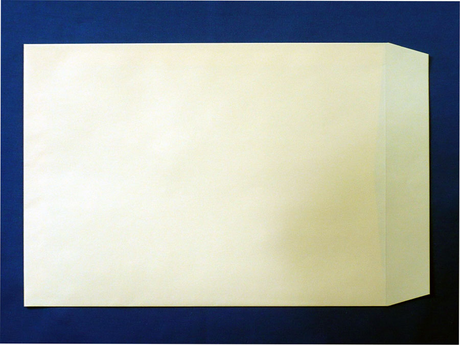 角2封筒 ソフトクリーム 100g L貼/500枚 (K22251)