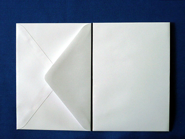 洋1封筒 白菊(枠なし)/100枚(Y10460)