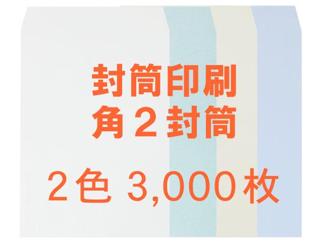 角2 中身が見えない封筒 プラテクト100L ◎3,000枚 【印刷2色】送料無料 /フォーマット注文