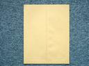 大型封筒 ジャンボバック2号 クラフト120g/200枚(W9J220) 送料無料