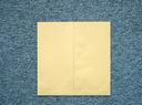 大型封筒 ジャンボバック3号 クラフト100g/200枚(W9J300)