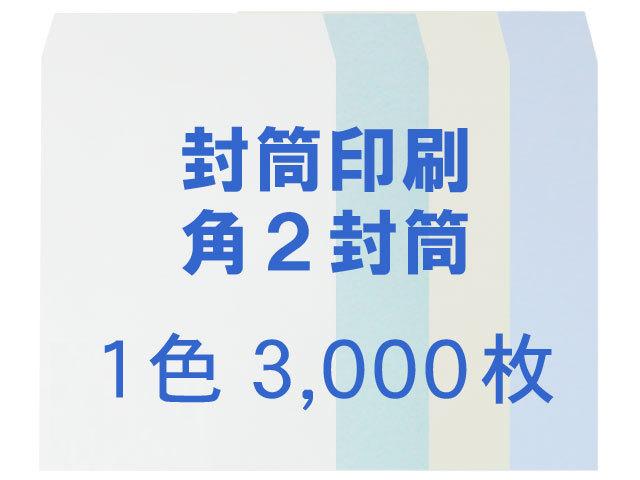 角2 中身が見えない封筒 プラテクト100L ◎3,000枚 【印刷1色】  /フォーマット注文