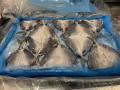 冷凍 アジの開き 60尾 4kg入り アジフライ 天ぷらなど
