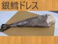 冷凍   ギンダラドレス 1尾 バラ売り