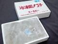 国産 特大 メゴチ(開き) 約 600g入り 天ぷらなど
