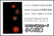 スキミング防止カード【小早川家】