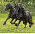 Boiselle カレンダー 2019 Lサイズ フリージアン