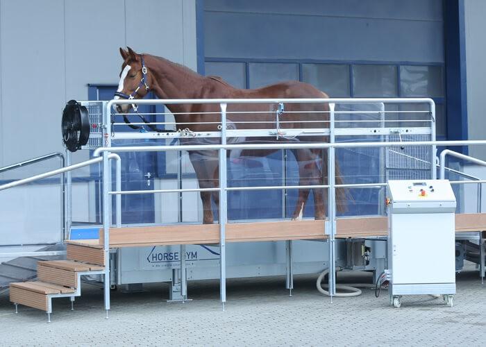 Horse Gym2000 T4(45km)