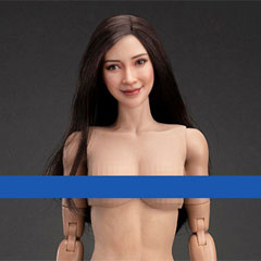 【VeryCool】FX10 1/6 Asia Youthful Beauty Head Sculpt + VC 3.0 Middle Chest Female Body Set 1/6スケール 女性ボディ素体