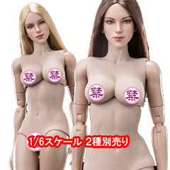 【VeryCool】FX07 A&B 1/6 Supermodel Head Sculpt + Female Body Set 1/6スケール 女性ボディ素体