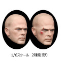 【HSPTOYS】1001A B European male head sculpture 1/6スケール 男性ヘッド