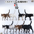 【JxK.Studio】JxK003 1/6 Chinese Cats 1/6スケール 猫 ネコ
