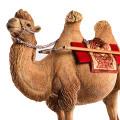【JxK.Studio】Jxk005A 1/6 Camelus 1/6スケール 駱駝 ラクダ