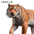 【JxK.Studio】Jxk012A 1/6 yellow Bengal tiger  1/6スケール ベンガルタイガー 虎 トラ