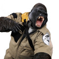 【MR.Z】MRZ031-GBG001 Gorilla Beringei Graueri 1/6スケール グラウアーゴリラ (黒) 探検おでかけセット