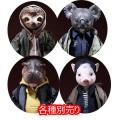 "【MR.Z】7"" Pocket Zootopia Collection-Series No.1 pzcs001-004 ポケットズートピア シリーズ1 各種 ナマケモノ、コアラ、カバ、ブタ"