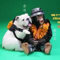 "【MR.Z】PZCS012set 7""  Baby Pang & Jimmy ポケットズートピア ベイビーチンパンジー&ブルドッグ 仲良しセット"