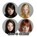 【SUPERDUCK】SDDX03 A B C 1/6スケール 眼球可動 植毛 女性ヘッド
