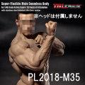 【TBLeague】PL2018-M35 TBリーグ 1/6スケール シームレス男性ボディ(ヘッドなし)