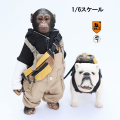 【MR.Z】MRZ023VIP Chimpanzee and Bulldog Statues 1/6スケール チンパンジー&ブルドッグ お友達セット 特別衣装版