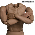 【WorldBox】AT025 DURABLE BODY Action Body 1/6スケール 男性ボディ素体