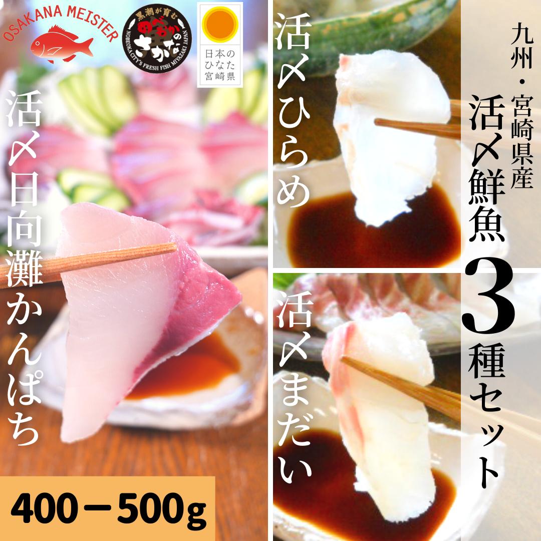 【送料無料】活〆鮮魚3種セット 約400-500g(柵)/日向灘かんぱち・真鯛・ひらめ