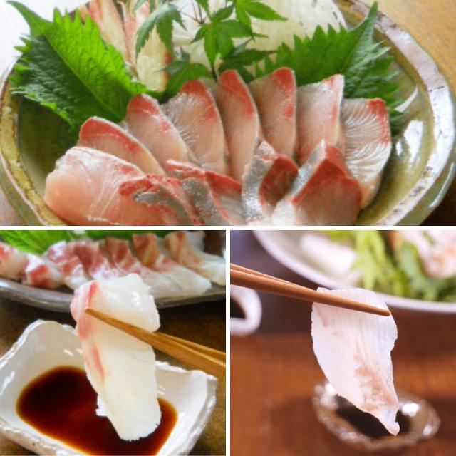 活〆鮮魚少量3種ブリ・タイ・ヒラメセット